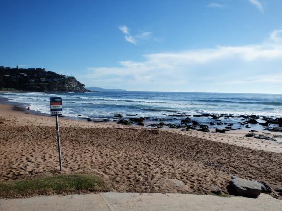 Whale Beach Morning